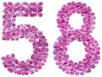Arabiskt tal 58, femtioåtta, från blommor av lilan som isoleras Royaltyfri Foto