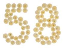 Arabiskt tal 58, femtioåtta, från kräm- blommor av chrysanthe Arkivfoton