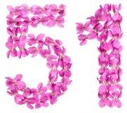 Arabiskt tal 51, femtio en, från blommor av altfiolen som isoleras på Arkivbilder