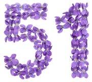 Arabiskt tal 51, femtio en, från blommor av altfiolen som isoleras på Arkivfoto