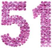 Arabiskt tal 51, femtio en, från blommor av lilan som isoleras på Royaltyfria Bilder