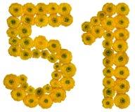 Arabiskt tal 51, femtio en, från gula blommor av smörblomman, Royaltyfria Foton