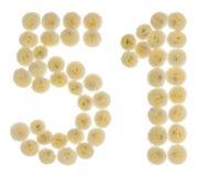 Arabiskt tal 51, femtio en, från kräm- blommor av chrysanthemuen Royaltyfri Fotografi