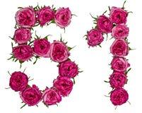 Arabiskt tal 51, femtio en, från röda blommor av steg, isolerat Arkivbild