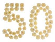 Arabiskt tal 50, femtio, från kräm- blommor av krysantemumet, I Royaltyfria Bilder