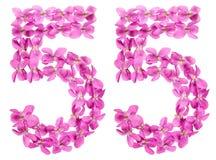 Arabiskt tal 55, femtiofem, från blommor av altfiolen, isolerade nolla Arkivbilder