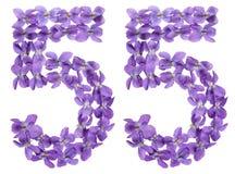 Arabiskt tal 55, femtiofem, från blommor av altfiolen, isolerade nolla Arkivfoton