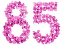 Arabiskt tal 85, femtiofem, från blommor av altfiolen som isoleras Fotografering för Bildbyråer