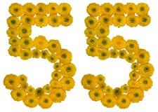 Arabiskt tal 55, femtiofem, från gula blommor av smörblomman, Arkivbilder