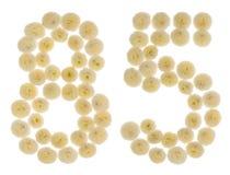 Arabiskt tal 85, femtiofem, från kräm- blommor av chrysanthe Fotografering för Bildbyråer