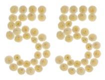 Arabiskt tal 55, femtiofem, från kräm- blommor av chrysanthem Royaltyfri Foto