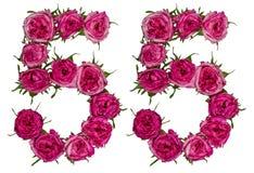 Arabiskt tal 55, femtiofem, från röda blommor av rosen, isolat Royaltyfria Bilder