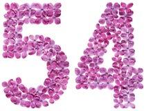 Arabiskt tal 54, femtiofyra, från blommor av lilan, isolerade nolla Royaltyfria Bilder