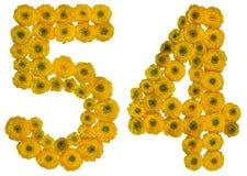Arabiskt tal 54, femtiofyra, från gula blommor av smörblomman, Fotografering för Bildbyråer