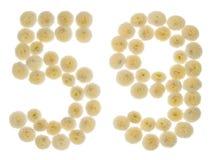 Arabiskt tal 59, femtionio, från kräm- blommor av chrysanthem Arkivbild