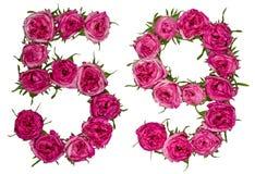 Arabiskt tal 59, femtionio, från röda blommor av rosen, isolat Royaltyfri Fotografi
