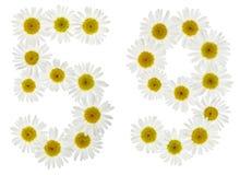 Arabiskt tal 59, femtionio, från vita blommor av kamomillen, Royaltyfria Foton