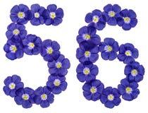 Arabiskt tal 56, femtiosex, från blåa blommor av lin, isolat Fotografering för Bildbyråer