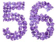 Arabiskt tal 56, femtiosex, från blommor av altfiolen som isoleras på Royaltyfri Bild