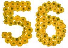 Arabiskt tal 56, femtiosex, från gula blommor av smörblomman, Royaltyfria Foton