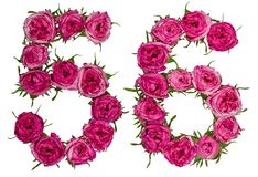 Arabiskt tal 56, femtiosex, från röda blommor av steg, isolerat Fotografering för Bildbyråer