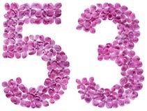 Arabiskt tal 53, femtiotre, från blommor av lilan som isoleras royaltyfria foton