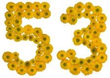 Arabiskt tal 53, femtiotre, från gula blommor av smörblomman Arkivfoton