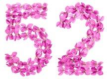 Arabiskt tal 52, femtiotvå, från blommor av altfiolen som isoleras på Royaltyfri Fotografi