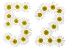Arabiskt tal 52, femtiotvå, från vita blommor av kamomillen, I Royaltyfria Bilder