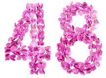 Arabiskt tal 48, fyrtioåtta, från blommor av altfiolen som isoleras Royaltyfri Foto