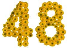 Arabiskt tal 48, fyrtioåtta, från gula blommor av smörblomman Arkivfoto