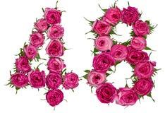 Arabiskt tal 48, fyrtioåtta, från röda blommor av steg, isolat Fotografering för Bildbyråer