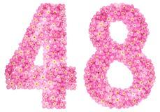 Arabiskt tal 48, fyrtioåtta, från rosa förgätmigej blommar, Arkivbild