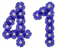 Arabiskt tal 41, fyrtio en, från blåa blommor av lin, isolat Royaltyfri Foto