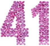 Arabiskt tal 41, fyrtio en, från blommor av lilan som isoleras på Arkivfoto