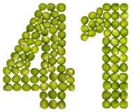 Arabiskt tal 41, fyrtio en, från gröna ärtor som isoleras på vit Royaltyfri Bild