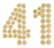 Arabiskt tal 41, fyrtio en, från kräm- blommor av chrysanthemuen Royaltyfria Foton