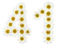 Arabiskt tal 41, fyrtio en, från vita blommor av kamomillen, I Royaltyfri Foto