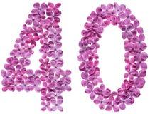 Arabiskt tal 40, fyrtio, från blommor av lilan som isoleras på whi Royaltyfri Bild