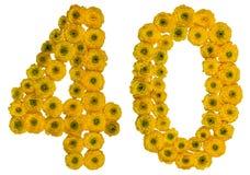 Arabiskt tal 40, fyrtio, från gula blommor av smörblomman, isolator Royaltyfria Bilder