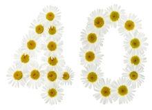 Arabiskt tal 40, fyrtio, från vita blommor av kamomillen, isola Royaltyfri Bild