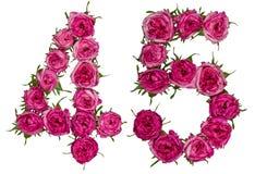 Arabiskt tal 45, fyrtiofem, från röda blommor av rosen, isolat Royaltyfria Foton