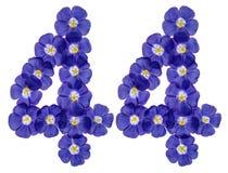 Arabiskt tal 44, fyrtiofyra, från blåa blommor av lin, isolat Royaltyfria Bilder