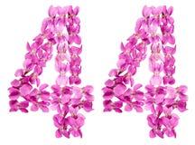 Arabiskt tal 44, fyrtiofyra, från blommor av altfiolen, isolerade nolla Royaltyfri Fotografi