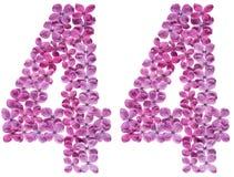 Arabiskt tal 44, fyrtiofyra, från blommor av lilan, isolerade nolla Arkivfoton