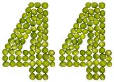 Arabiskt tal 44, fyrtiofyra, från gröna ärtor som isoleras på whit Royaltyfri Bild