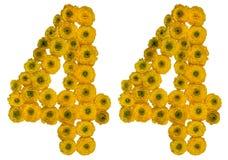 Arabiskt tal 44, fyrtiofyra, från gula blommor av smörblomman, Fotografering för Bildbyråer