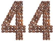 Arabiskt tal 44, fyrtiofyra, från kaffebönor som isoleras på wh Royaltyfri Foto