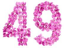 Arabiskt tal 49, fyrtionio, från blommor av altfiolen, isolerade nolla Arkivbilder