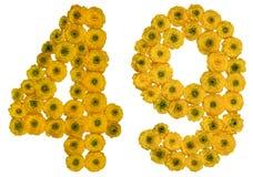 Arabiskt tal 49, fyrtionio, från gula blommor av smörblomman, Royaltyfria Foton